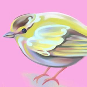bird-4-6-2015