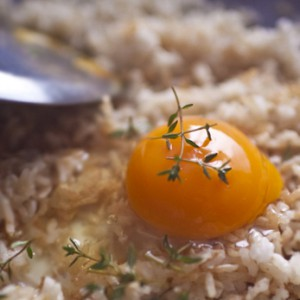 Egg on rice