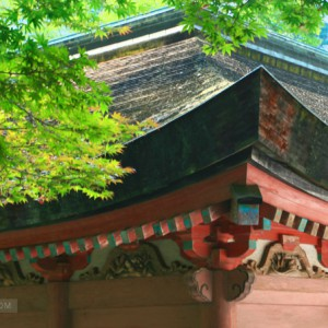 japan-wood-structure
